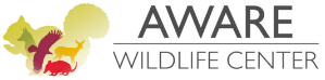 AWARE Wildlife Center