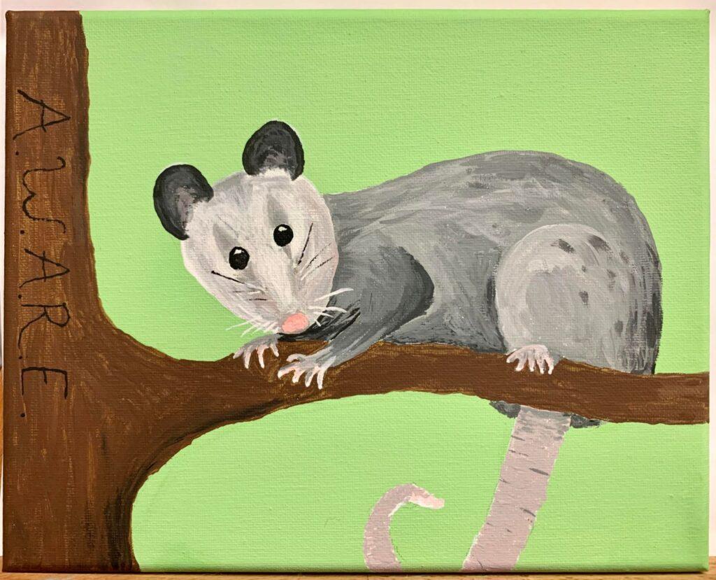 """""""Opossum"""" by Jamie W."""