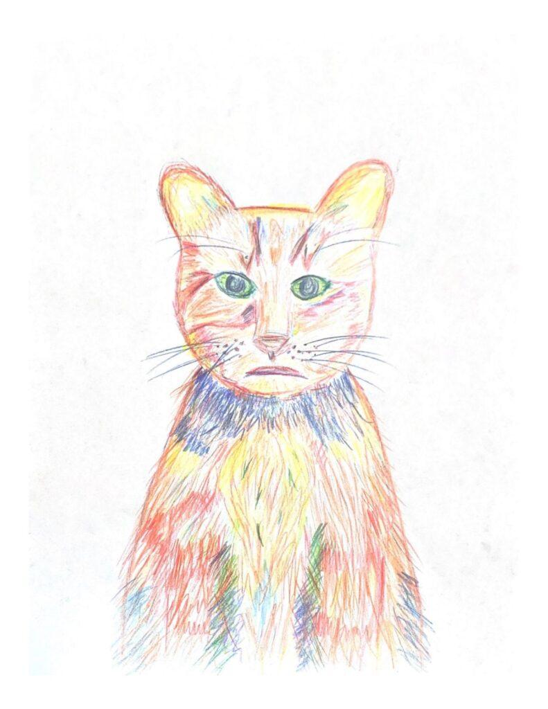 """""""My Brother's Cat"""" by Jamie W."""