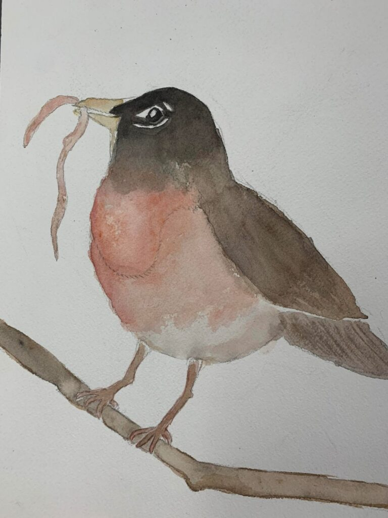 """Robin"" by Leah G."