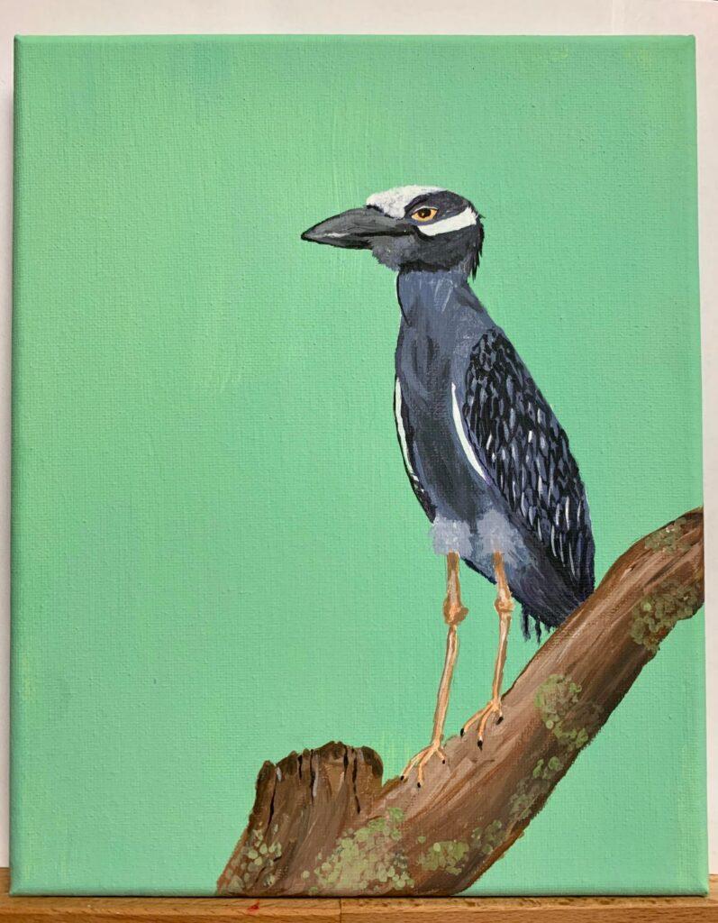 """Yellow Crowned Night Heron"" by Jamie W."